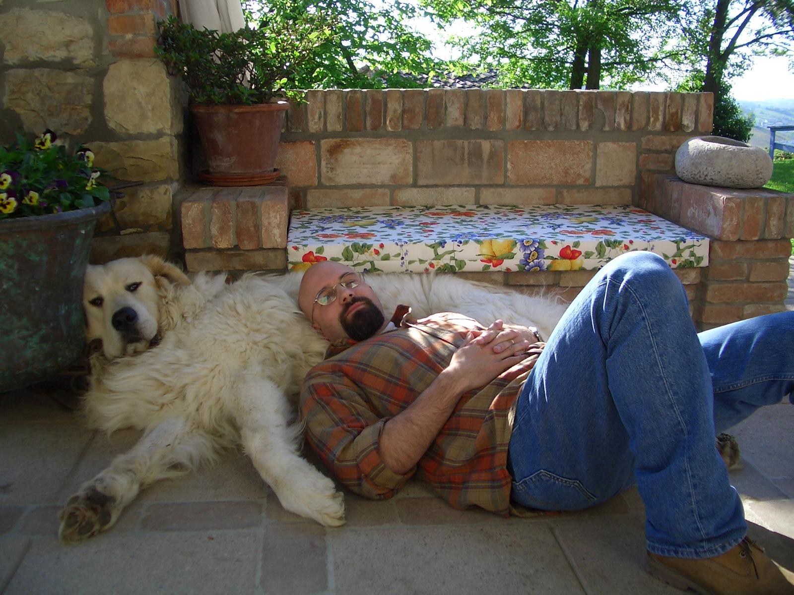 Dormire con il cane - Dormire sul divano ...
